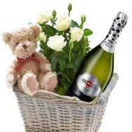Indoor flower, teddy bear and champagne in the basket - flowers and bouquets on df.ua