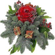 Композиция из еловых веток и розы - цветы и букеты на df.ua