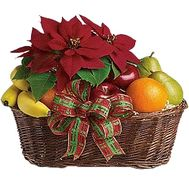 Fruit basket and Christmas star - flowers and bouquets on df.ua
