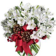 Новогодняя композиция из цветов с ветками ели - цветы и букеты на df.ua