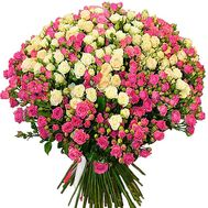 101 cluster rose - flowers and bouquets on df.ua