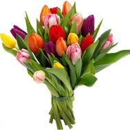 19 tulips - flowers and bouquets on df.ua