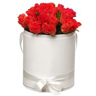 25 orange roses in a round box - flowers and bouquets on df.ua