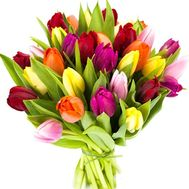 31 tulip - flowers and bouquets on df.ua