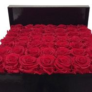 35 red roses in a box - flowers and bouquets on df.ua
