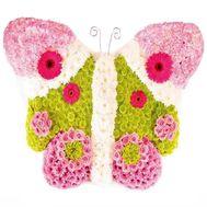Бабочка из цветов - цветы и букеты на df.ua