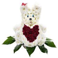 Белый мишка из цветов - цветы и букеты на df.ua