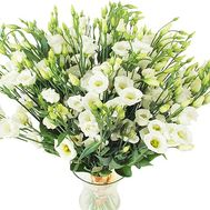 Large bouquet of white eustoma - flowers and bouquets on df.ua