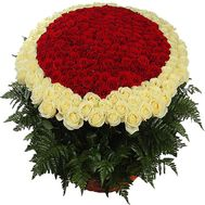 """Bouquet of 1000 (1001) roses"" in the online flower shop df.ua"