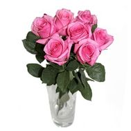 7 pink roses - flowers and bouquets on df.ua