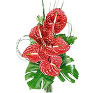 Bouquet of anthurium - flowers and bouquets on df.ua