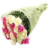 """25 white and pink roses"" in the online flower shop df.ua"