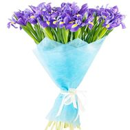 Bouquet of blue irises - flowers and bouquets on df.ua