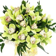 Bouquet of green orchids cymbidium - flowers and bouquets on df.ua