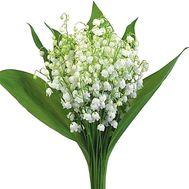 Букет ландышей - цветы и букеты на df.ua
