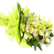Bouquet of green orchids with decoration - flowers and bouquets on df.ua