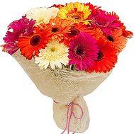 Герберы в букете - цветы и букеты на df.ua