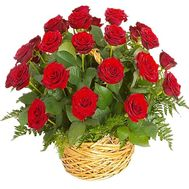 Basket 25 red roses - flowers and bouquets on df.ua