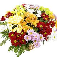 Chrysanthemum flowers basket - flowers and bouquets on df.ua