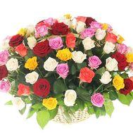 Корзина из 251 разноцветной розы - цветы и букеты на df.ua