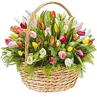 Basket of tulips - flowers and bouquets on df.ua