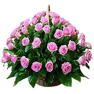 Basket of pink roses for 75 years - flowers and bouquets on df.ua