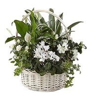 Basket with flowers as a gift - flowers and bouquets on df.ua