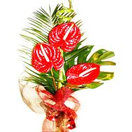 Red bouquet of flower - flowers and bouquets on df.ua