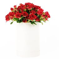 Spray roses in a hat box - flowers and bouquets on df.ua