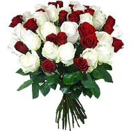 Розы большой букет - цветы и букеты на df.ua