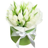 21 білий тюльпан в коробці - цветы и букеты на df.ua