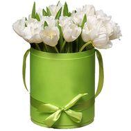 25 білих тюльпанів в коробці - цветы и букеты на df.ua