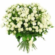 31 white spray rose - flowers and bouquets on df.ua