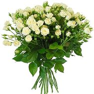 Bouquet of white spray roses - flowers and bouquets on df.ua