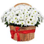 Большая корзина из ромашковых хризантем - цветы и букеты на df.ua