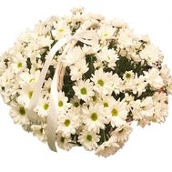 """Bouquet of daisies in a basket"" in the online flower shop df.ua"