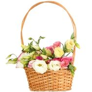 """Eustomams in the basket"" in the online flower shop df.ua"