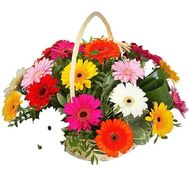"""Basket of 21 gerberas"" in the online flower shop df.ua"