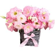 """Small basket of eustoma"" in the online flower shop df.ua"
