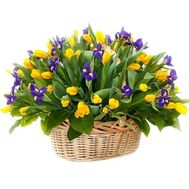 Yellow tulips and irises in a basket - flowers and bouquets on df.ua
