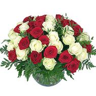 """41 red and white roses"" in the online flower shop df.ua"