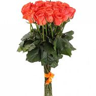 """19 orange roses"" in the online flower shop df.ua"