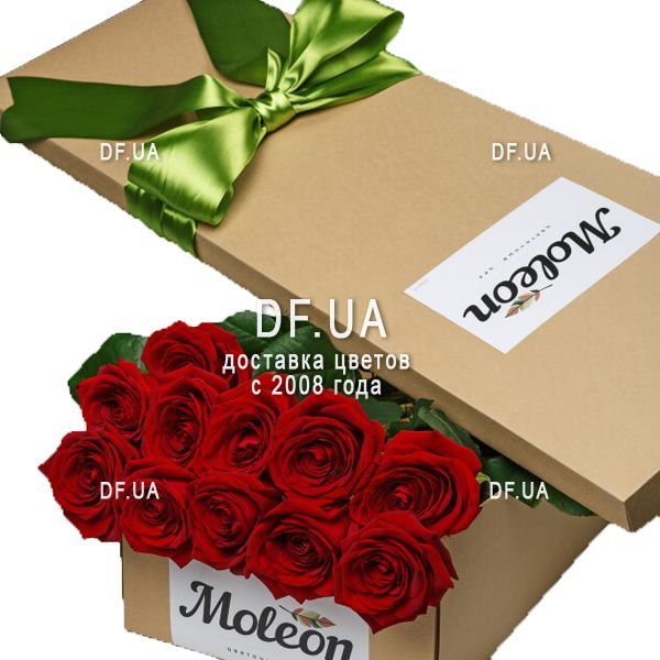 Red Roses In A Long Box
