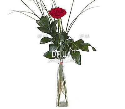 """1 red rose"" in the online flower shop df.ua"