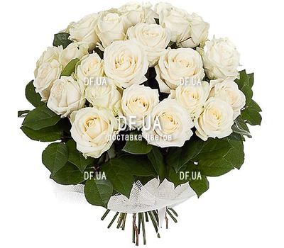 """31 white rose"" in the online flower shop df.ua"