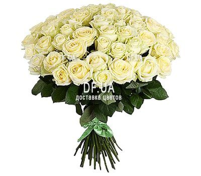 """51 white rose"" in the online flower shop df.ua"