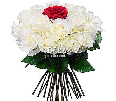 """24 white roses and 1 red"" in the online flower shop df.ua"