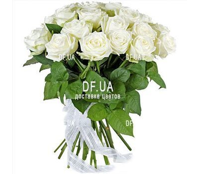 """19 white roses"" in the online flower shop df.ua"
