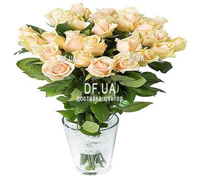 """""""25 cream-colored roses"""" in the online flower shop df.ua"""