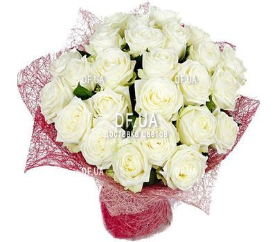 """25 white roses"" in the online flower shop df.ua"